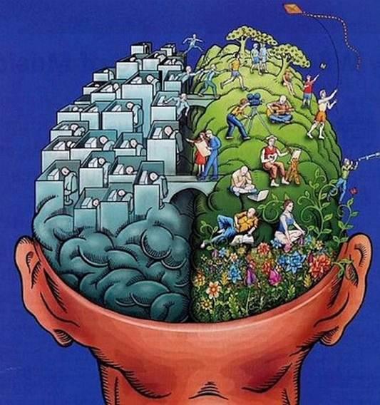 rationalist vs behavioralist paradigms Classical finance vs behavioral finance: a new paradigm dr mohamed sherif   essential for investors to have rational behavior patterns rational behavior is.