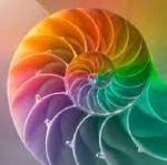 spiral dynamics4